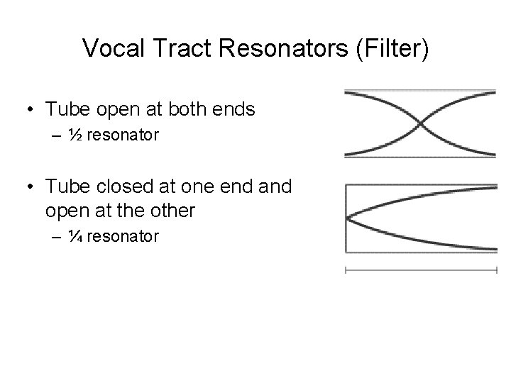Vocal Tract Resonators (Filter) • Tube open at both ends – ½ resonator •