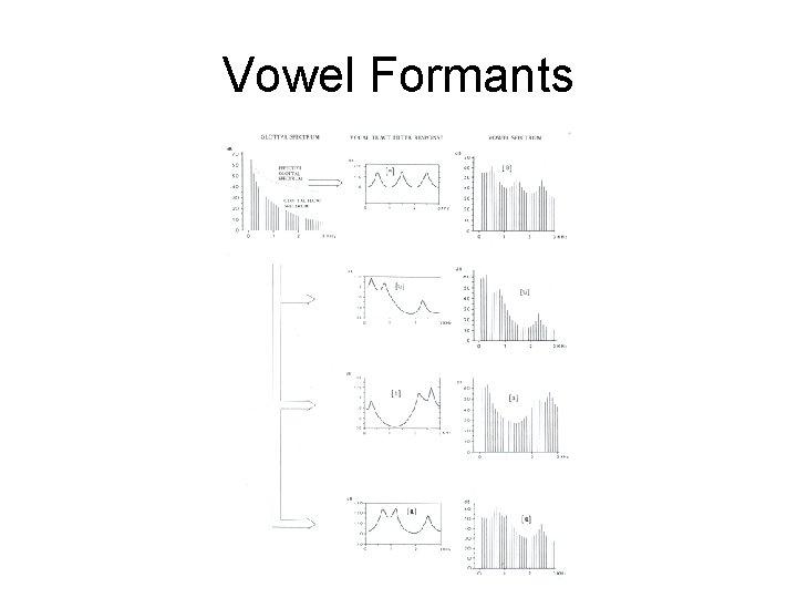 Vowel Formants