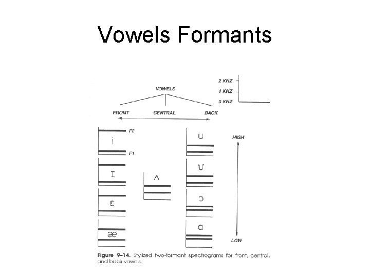 Vowels Formants