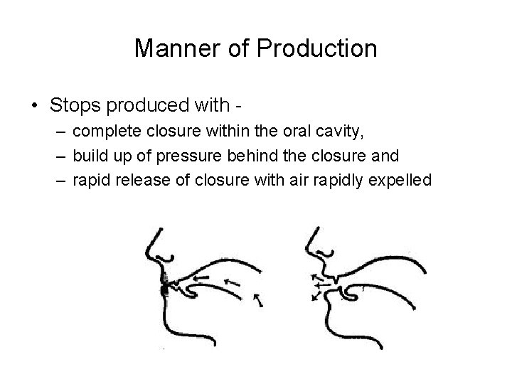Manner of Production • Stops produced with – complete closure within the oral cavity,