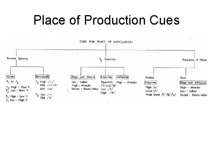 Place of Production Cues