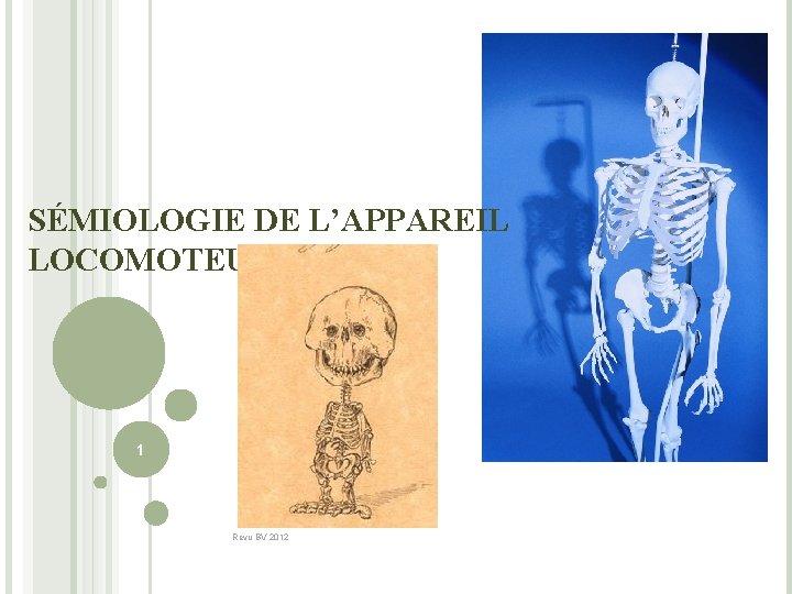 SÉMIOLOGIE DE L'APPAREIL LOCOMOTEUR 1 Revu BV 2012