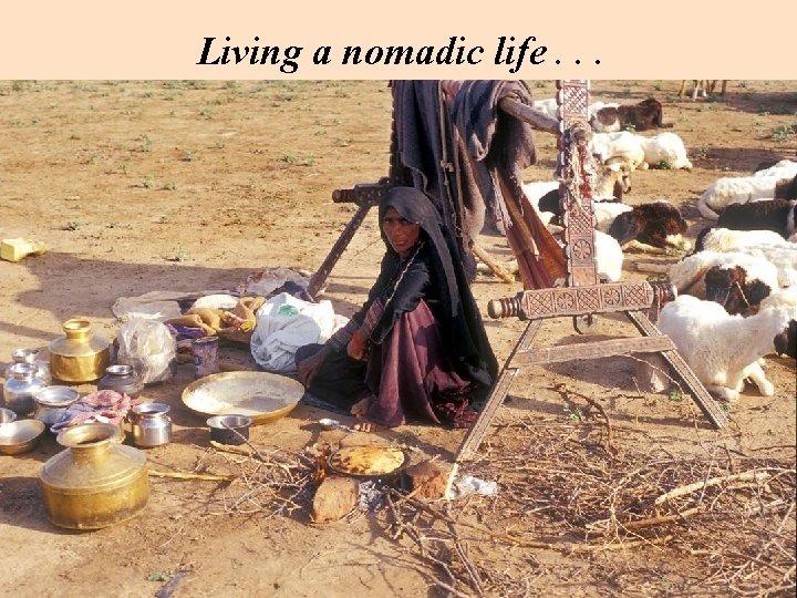 Living a nomadic life. . .