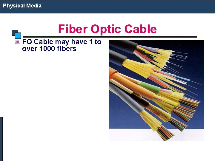Physical Media Fiber Optic Cable FO Cable may have 1 to over 1000 fibers