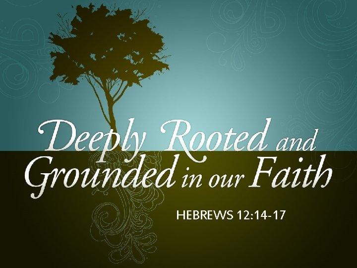 HEBREWS 12: 14 -17