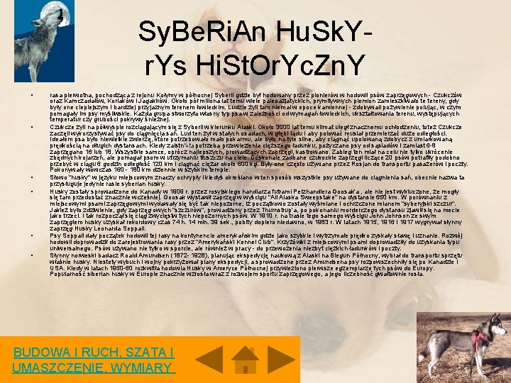 Sy. Be. Ri. An Hu. Sk. Yr. Ys Hi. St. Or. Yc. Zn. Y