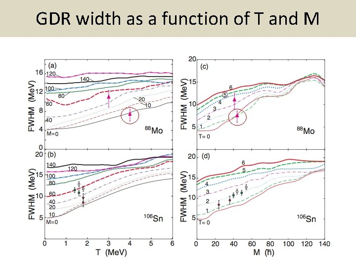 GDR width as a function of T and M