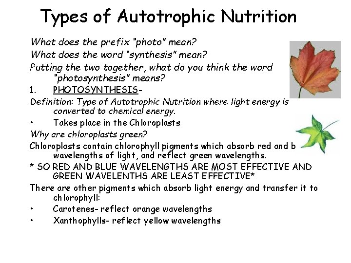 """Types of Autotrophic Nutrition What does the prefix """"photo"""" mean? What does the word"""