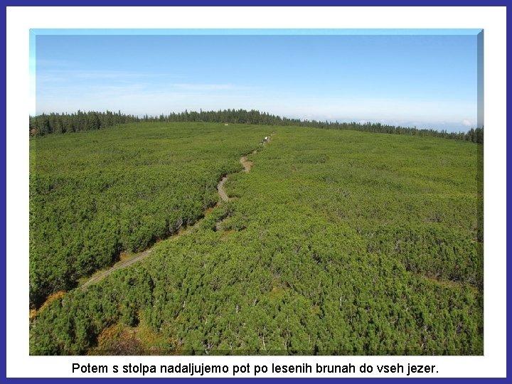 Potem s stolpa nadaljujemo pot po lesenih brunah do vseh jezer.