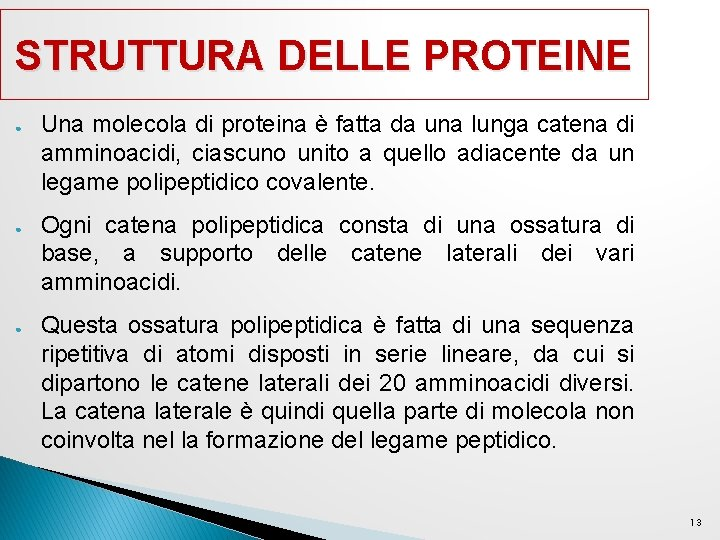 STRUTTURA DELLE PROTEINE ● ● ● Una molecola di proteina è fatta da una