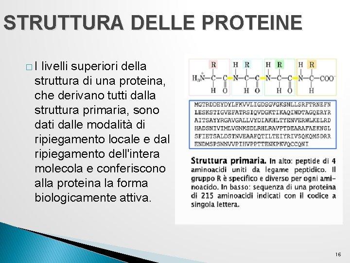 STRUTTURA DELLE PROTEINE �I livelli superiori della struttura di una proteina, che derivano tutti