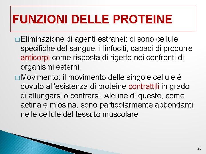 FUNZIONI DELLE PROTEINE � Eliminazione di agenti estranei: ci sono cellule specifiche del sangue,