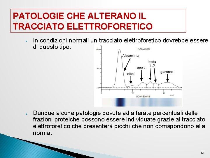 PATOLOGIE CHE ALTERANO IL TRACCIATO ELETTROFORETICO ● ● In condizioni normali un tracciato elettroforetico