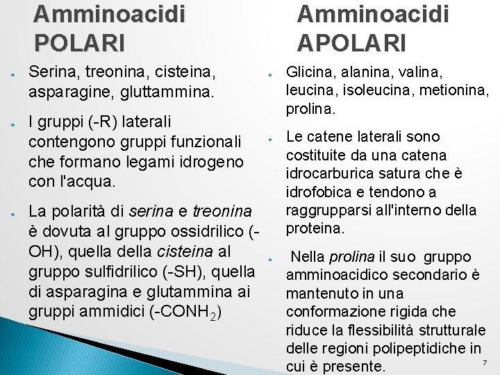 Amminoacidi POLARI ● ● ● Serina, treonina, cisteina, asparagine, gluttammina. I gruppi (-R) laterali