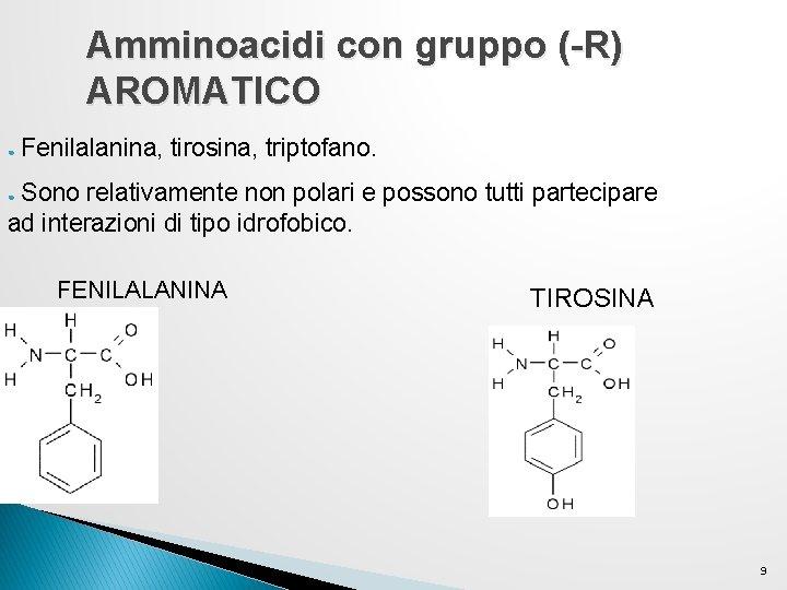 Amminoacidi con gruppo (-R) AROMATICO ● Fenilalanina, tirosina, triptofano. Sono relativamente non polari e