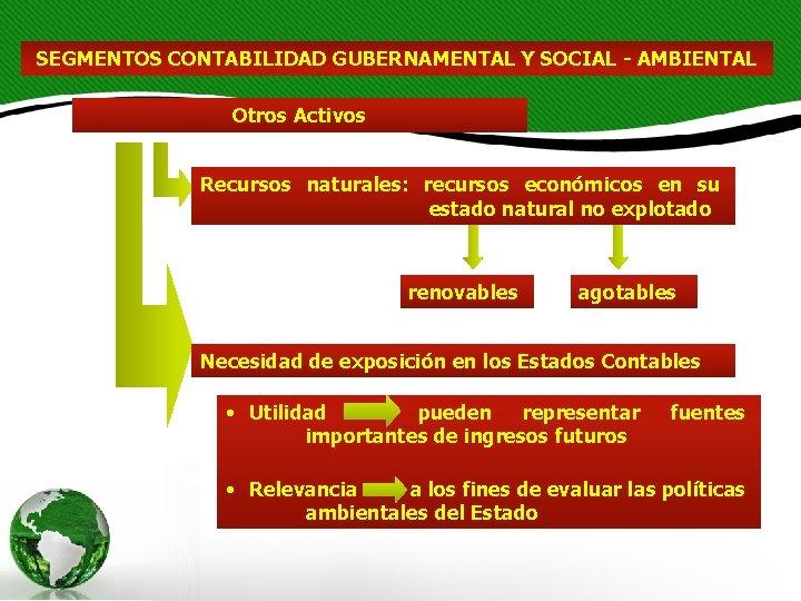 SEGMENTOS CONTABILIDAD GUBERNAMENTAL Y SOCIAL - AMBIENTAL Otros Activos Recursos naturales: recursos económicos en