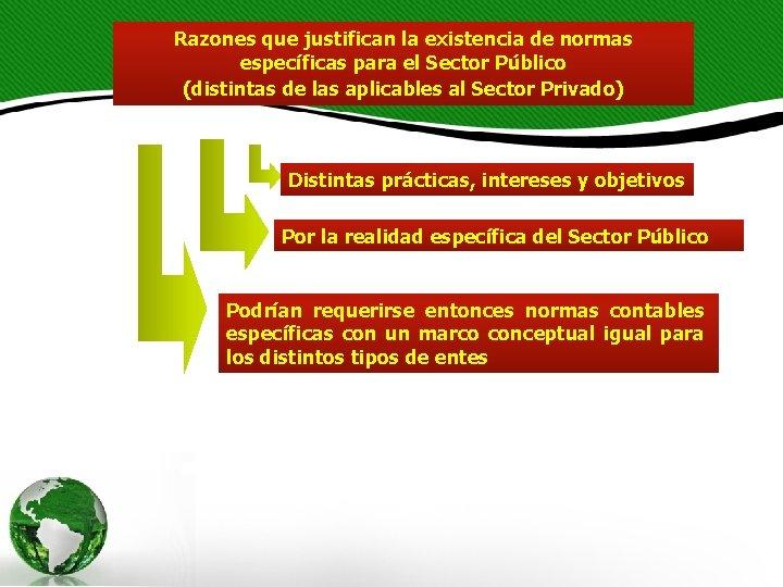 Razones que justifican la existencia de normas específicas para el Sector Público (distintas de