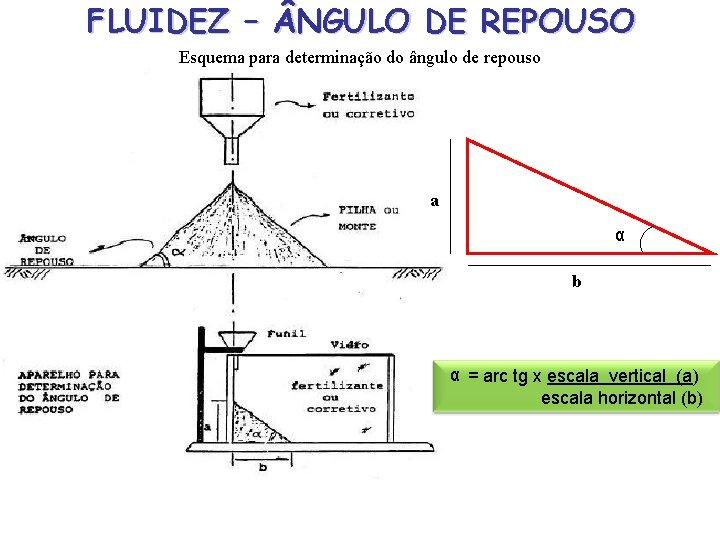 FLUIDEZ – NGULO DE REPOUSO Esquema para determinação do ângulo de repouso a α
