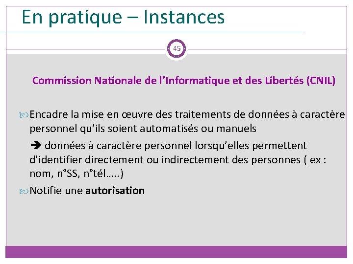 En pratique – Instances 45 Commission Nationale de l'Informatique et des Libertés (CNIL) Encadre