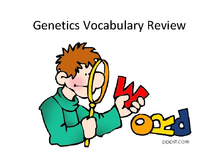 Genetics Vocabulary Review