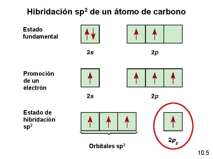 Hibridación sp 2 de un átomo de carbono Estado fundamental Promoción de un electrón
