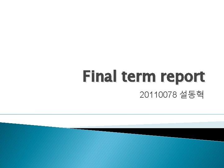Final term report 20110078 설동혁
