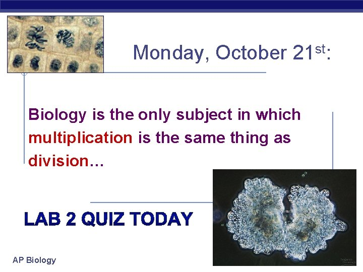 Monday, October 21 st: Biology is the only subject in which multiplication is the