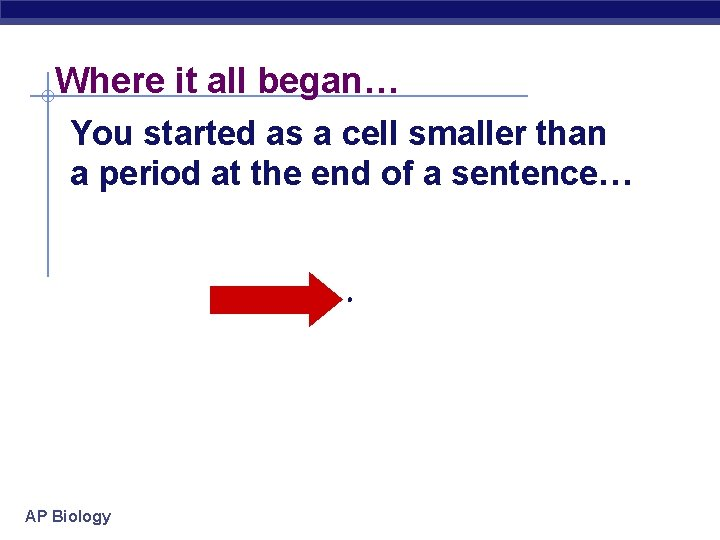 Where it all began… You started as a cell smaller than a period at