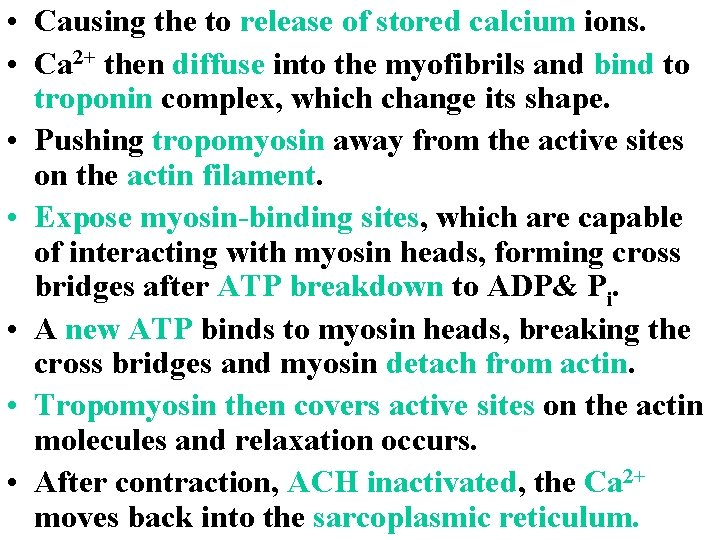 • Causing the to release of stored calcium ions. • Ca 2+ then