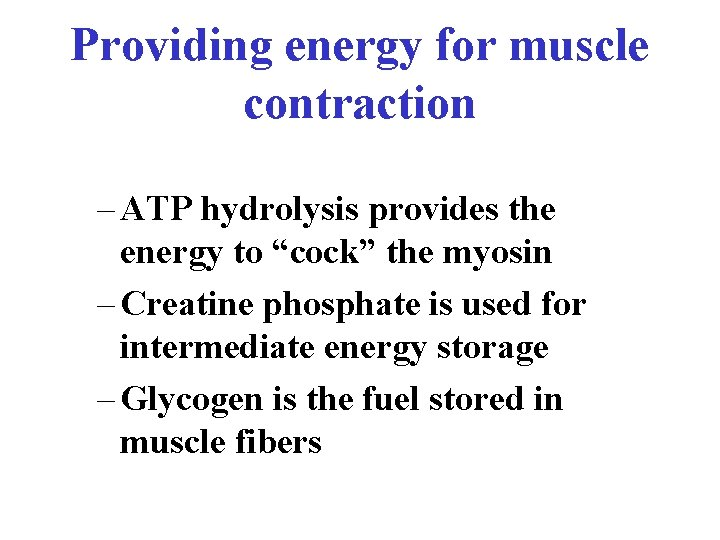 """Providing energy for muscle contraction – ATP hydrolysis provides the energy to """"cock"""" the"""