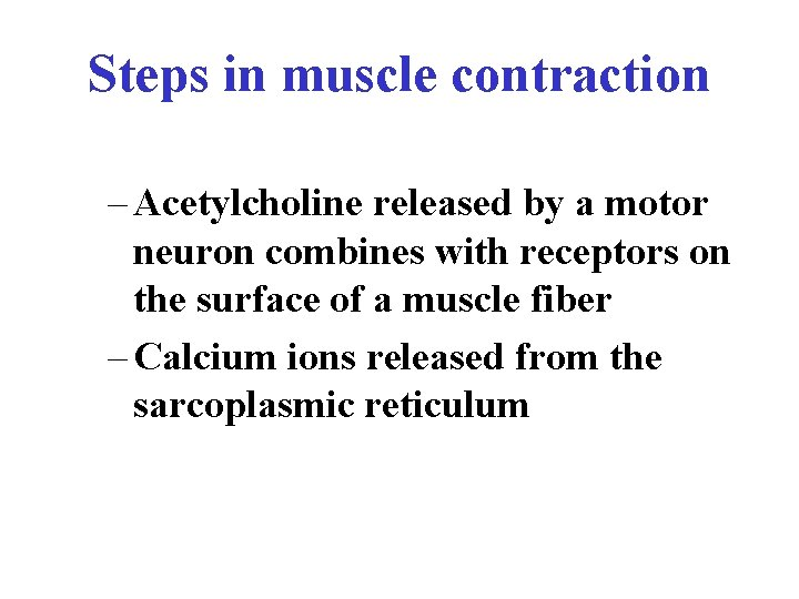 Steps in muscle contraction – Acetylcholine released by a motor neuron combines with receptors