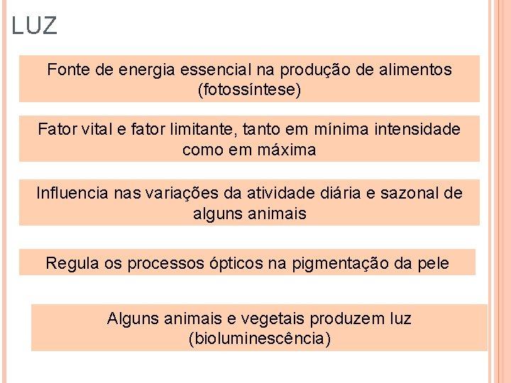 LUZ Fonte de energia essencial na produção de alimentos (fotossíntese) Fator vital e fator