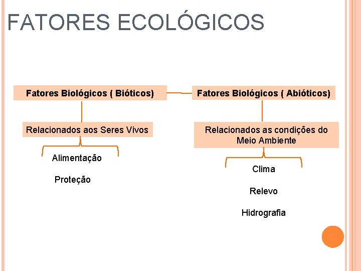 FATORES ECOLÓGICOS Fatores Biológicos ( Bióticos) Relacionados aos Seres Vivos Fatores Biológicos ( Abióticos)