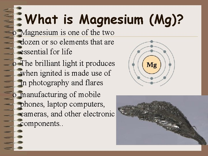 What is Magnesium (Mg)? o Magnesium is one of the two dozen or so