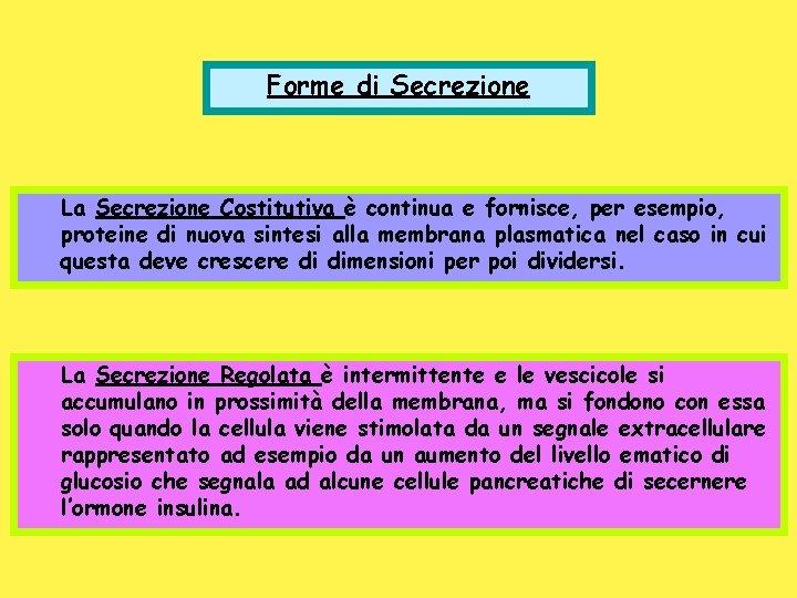 Forme di Secrezione La Secrezione Costitutiva è continua e fornisce, per esempio, proteine di