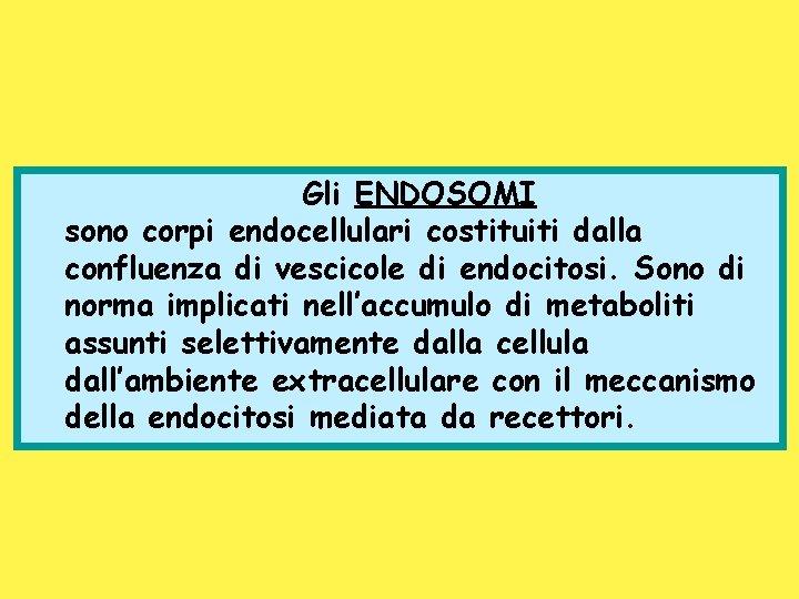 Gli ENDOSOMI sono corpi endocellulari costituiti dalla confluenza di vescicole di endocitosi. Sono di