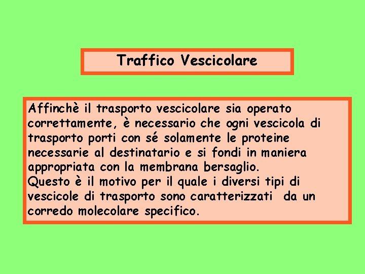 Traffico Vescicolare Affinchè il trasporto vescicolare sia operato correttamente, è necessario che ogni vescicola