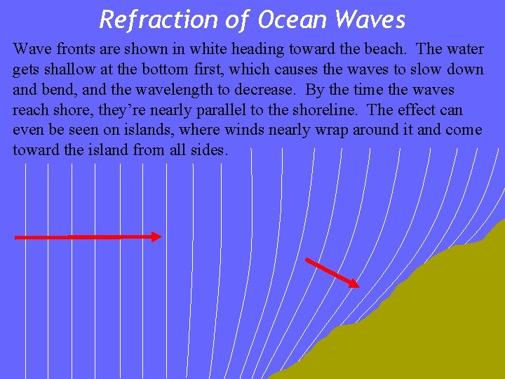 Refraction of Ocean Waves Wave fronts are shown in white heading toward the beach.