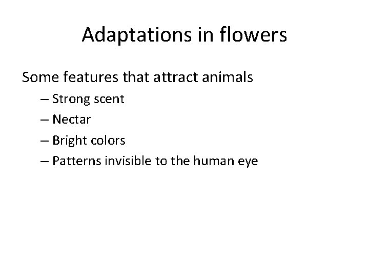 Adaptations in flowers Some features that attract animals – Strong scent – Nectar –