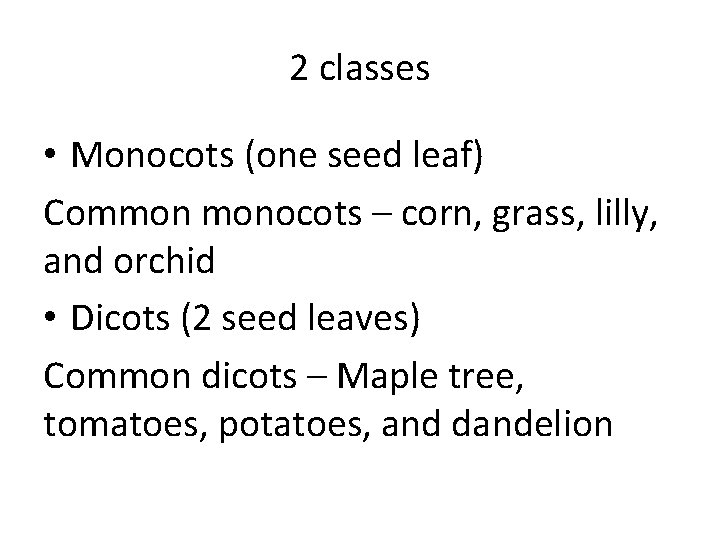 2 classes • Monocots (one seed leaf) Common monocots – corn, grass, lilly, and