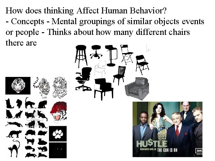 How does thinking Affect Human Behavior? - Concepts - Mental groupings of similar objects
