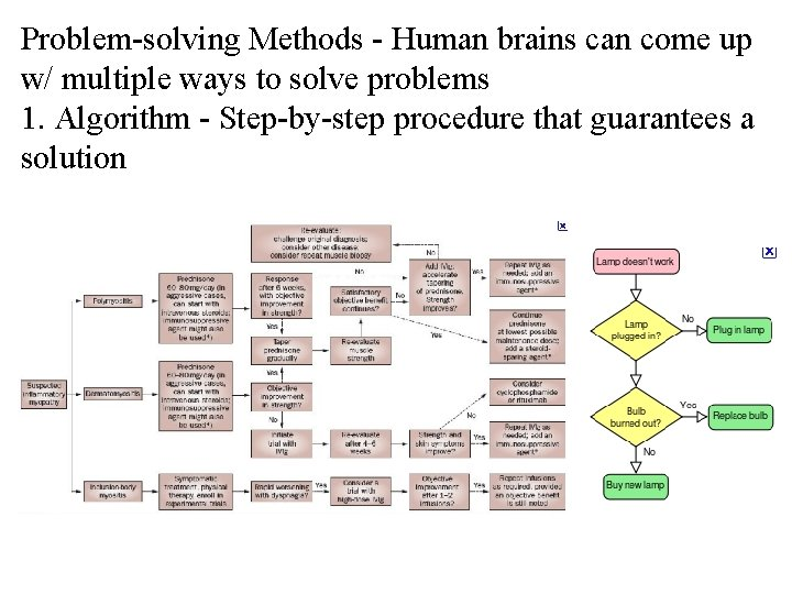 Problem-solving Methods - Human brains can come up w/ multiple ways to solve problems