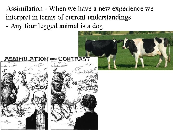 Assimilation - When we have a new experience we interpret in terms of current