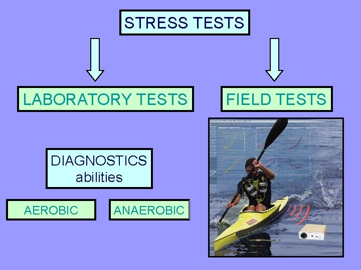 STRESS TESTS LABORATORY TESTS DIAGNOSTICS abilities AEROBIC ANAEROBIC FIELD TESTS