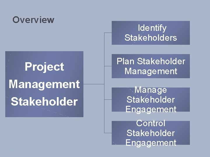 Overview Project Management Stakeholder Identify Stakeholders Plan Stakeholder Management Manage Stakeholder Engagement Control Stakeholder