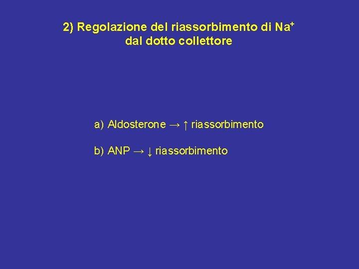 2) Regolazione del riassorbimento di Na+ dal dotto collettore a) Aldosterone → ↑ riassorbimento