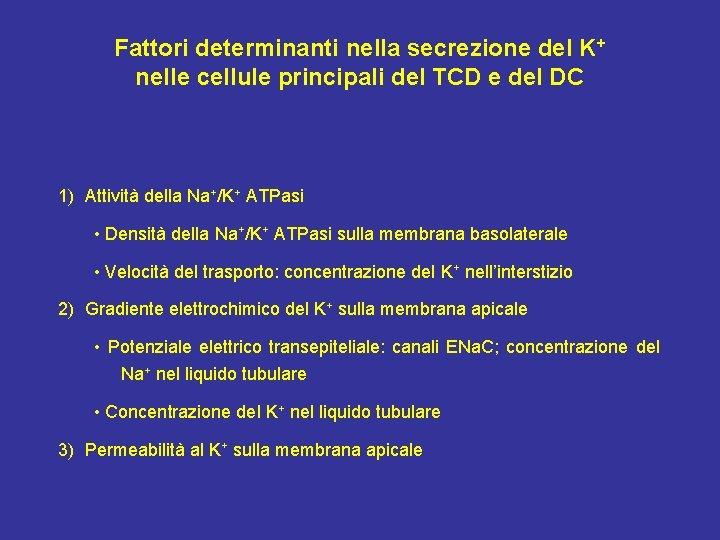 Fattori determinanti nella secrezione del K+ nelle cellule principali del TCD e del DC