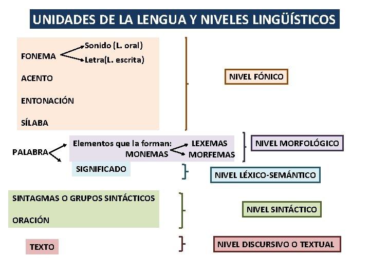 UNIDADES DE LA LENGUA Y NIVELES LINGÜÍSTICOS Sonido (L. oral) FONEMA Letra(L. escrita) NIVEL