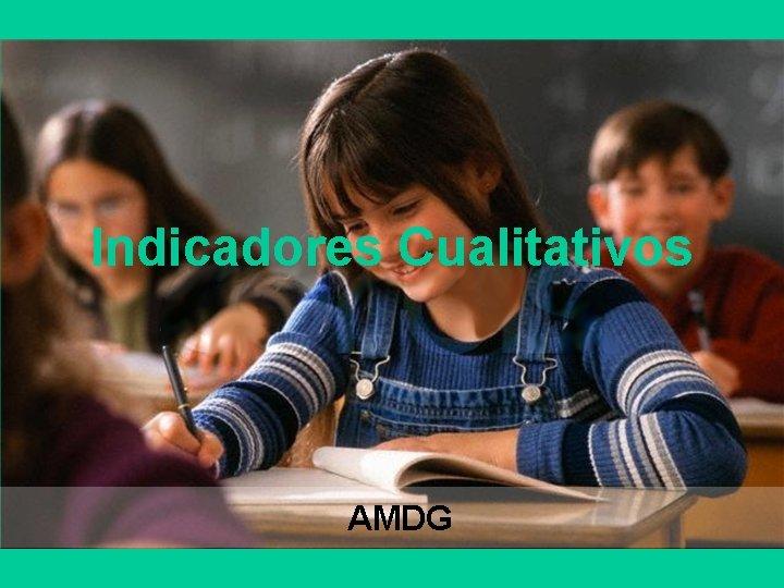 Indicadores Cualitativos AMDG
