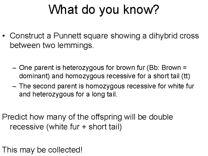 What do you know? • Construct a Punnett square showing a dihybrid cross between